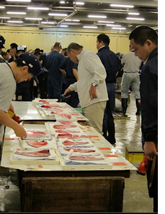 sushi market japan